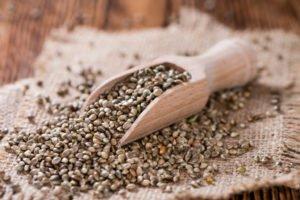 zoom sur les graines de chanvre