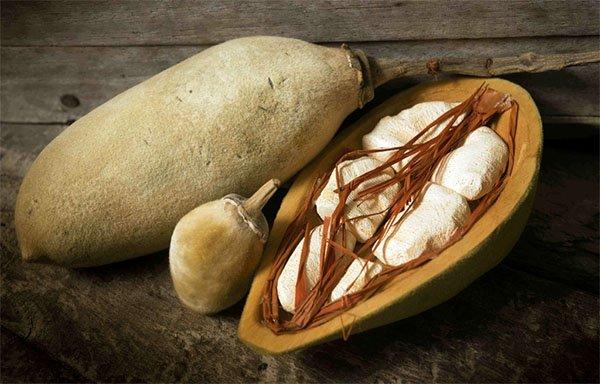 baobab fruit bouye pain de singe biologique